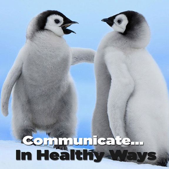 Learn from two cute penguin babies and take a step back before you go off pointing a finger on a rant