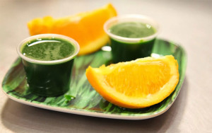 Shots of Wheatgrass with Two Orange Wedge Slices