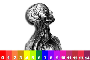 The pH of a healthy human being is between the range of 7.35 to 7.45
