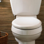 Bristol Stool Chart – What is Your Poop Telling You?