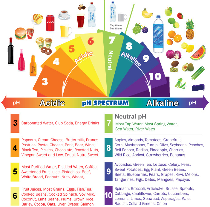 Acid and Alkaline Forming Foods Chart