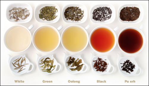 Powerful Antioxidants 01 White Tea Doctor Scott