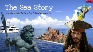 Cranial nerves mnemonic using storytelling - The Sea Story
