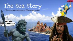 Cranial nerves mnemonic using storytelling - The Sea Story