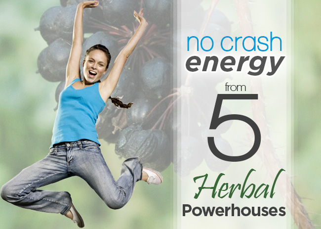 Herbs can provide excellent energy without the crash. This article present 5 herbal powerhouses