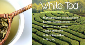 Powerful Antioxidants # 01 – White Tea