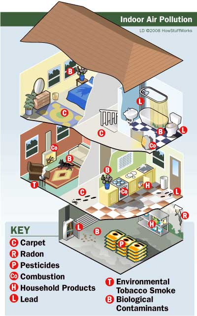 Indoor air pollution - Sources for common contamination infographic